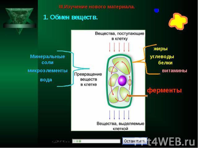 III.Изучение нового материала.1. Обмен веществ.