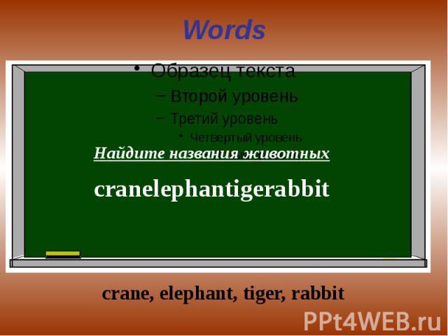 Words Найдите названия животныхcranelephantigerabbit