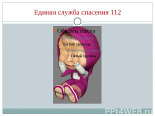 Единая служба спасения 112