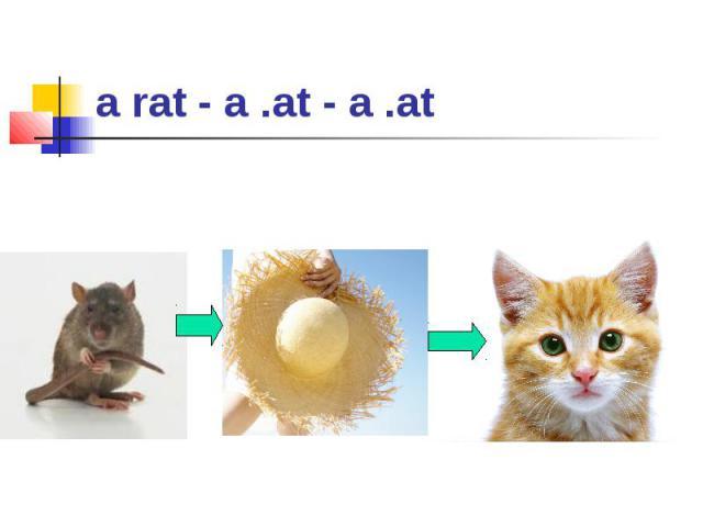 a rat - a .at - a .at