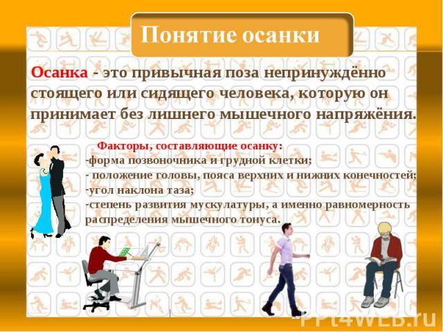 Понятие осанки Осанка - это привычная поза непринуждённо стоящего или сидящего человека, которую он принимает без лишнего мышечного напряжёния. Факторы, составляющие осанку:форма позвоночника и грудной клетки; положение головы, пояса верхних и нижни…