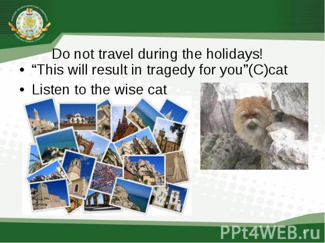 """""""This will result in tragedy for you""""(C)cat """"This will result in tragedy for you""""(C)cat Listen to the wise cat"""