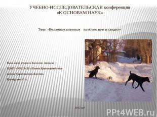 УЧЕБНО-ИССЛЕДОВАТЕЛЬСКАЯ конференция «К ОСНОВАМ НАУК» Тема: «Бездомные животные