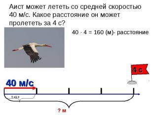 Аист может лететь со средней скоростью 40 м/с. Какое расстояние он может пролете