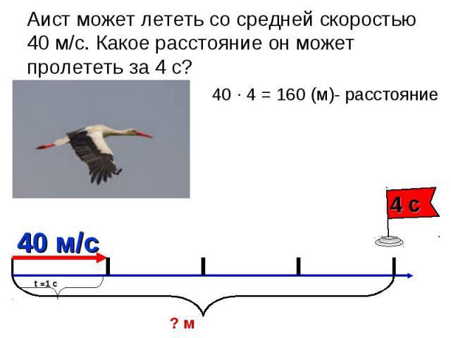 Аист может лететь со средней скоростью 40 м/с. Какое расстояние он может пролететь за 4 с? 40 ∙ 4 = 160 (м)- расстояние