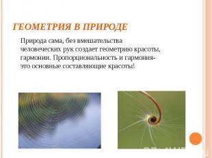 Геометрия в природе Природа сама, без вмешательства человеческих рук создает гео