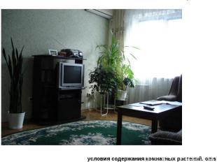 облик комнатных растений. omsусловия содержания комнатных растений. oms