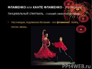 ФЛАМЕНКОилиКАНТЕ ФЛАМЕНКО- это песенно - танцевальный спектакль, ставший симв