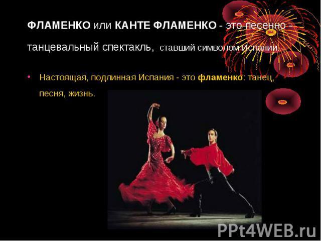 ФЛАМЕНКОилиКАНТЕ ФЛАМЕНКО- это песенно - танцевальный спектакль, ставший символом Испании. Настоящая, подлинная Испания - этофламенко: танец, песня, жизнь.