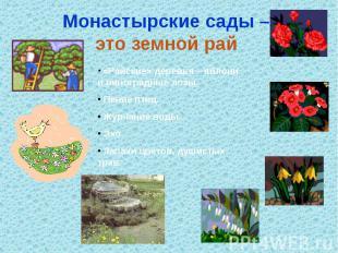 Монастырские сады – это земной рай «Райские» деревья – яблони и виноградные лозы
