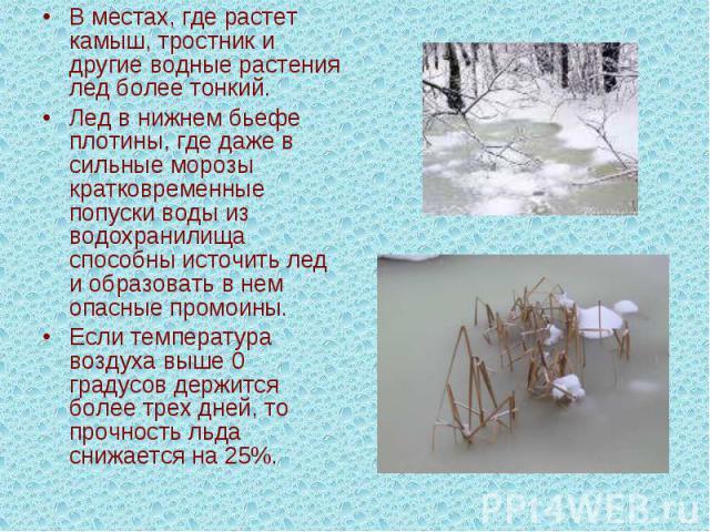 Вместах, где растет камыш, тростник и другие водные растения лед более тонкий. Лед в нижнем бьефе плотины, где даже в сильные морозы кратковременные попуски воды из водохранилища способны источить лед и образовать в нем опасные промоины. Если темпе…