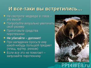 И все-таки вы встретились… Не смотрите медведю в глаза – это вызов!Попробуйте ви
