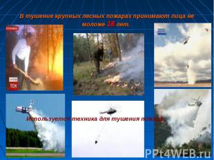 В тушение крупных лесных пожарах принимают лица немоложе 18 лет. Используется те