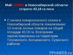 Май ( 2008г) в Новосибирской области сгорело 43,18 га леса С начала пожароопасно