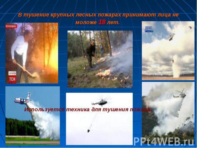 В тушение крупных лесных пожарах принимают лица немоложе 18 лет. Используется техника для тушения пожара.