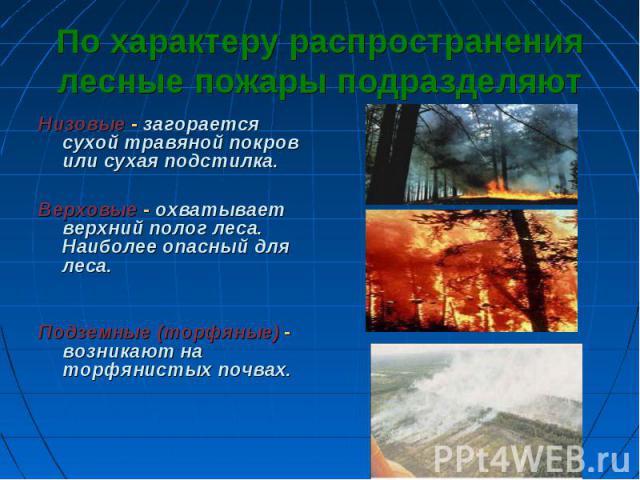 По характеру распространения лесные пожары подразделяют Низовые - загорается сухой травяной покров или сухая подстилка.Верховые - охватывает верхний полог леса. Наиболее опасный для леса.Подземные (торфяные) - возникают на торфянистых почвах.
