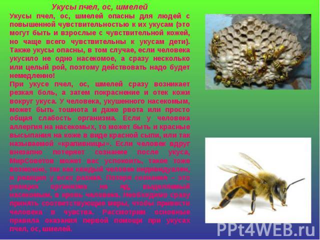 Укусы пчел, ос, шмелейУкусы пчел, ос, шмелей опасны для людей с повышенной чувствительностью к их укусам (это могут быть и взрослые с чувствительной кожей, но чаще всего чувствительны к укусам дети). Также укусы опасны, в том случае, если человека у…