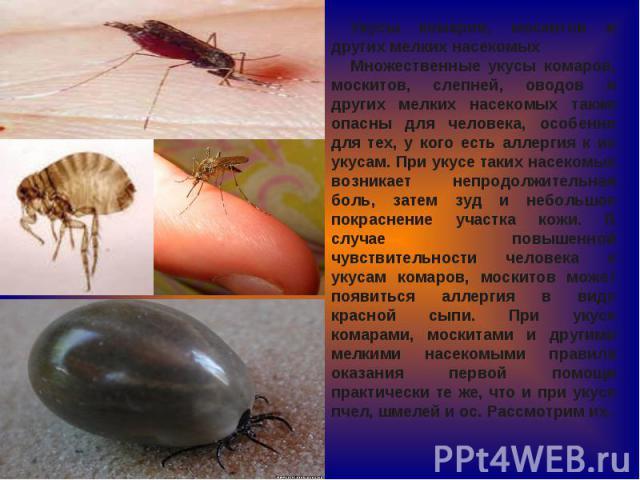 Укусы комаров, москитов и других мелких насекомыхМножественные укусы комаров, москитов, слепней, оводов и других мелких насекомых также опасны для человека, особенно для тех, у кого есть аллергия к их укусам. При укусе таких насекомых возникает непр…