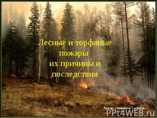Лесные и торфяные пожары их причины и последствия