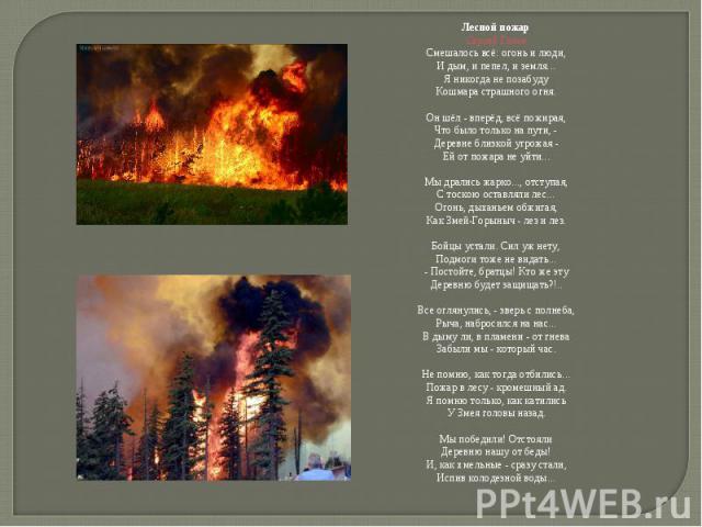 Лесной пожарСергей ГазинСмешалось всё: огонь и люди,И дым, и пепел, и земля...Я никогда не позабудуКошмара страшного огня.Он шёл - вперёд, всё пожирая,Что было только на пути, -Деревне близкой угрожая -Ей от пожара не уйти...Мы дрались жарко..., отс…