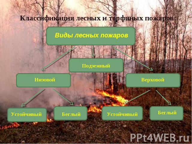 Классификация лесных и торфяных пожаров: