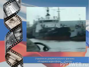 Отрывок из документального фильма «Владыка гидросферы – «Акула»