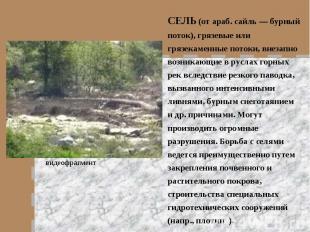 СЕЛЬ (от араб. сайль — бурный поток), грязевые или грязекаменные потоки, внезапн