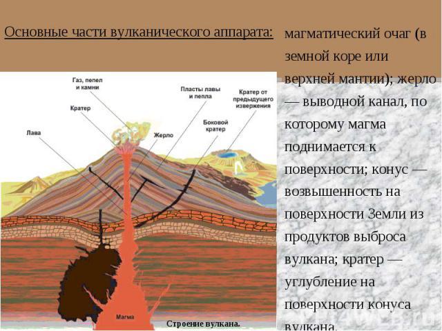 Основные части вулканического аппарата:магматический очаг (в земной коре или верхней мантии); жерло — выводной канал, по которому магма поднимается к поверхности; конус — возвышенность на поверхности Земли из продуктов выброса вулкана; кратер — углу…