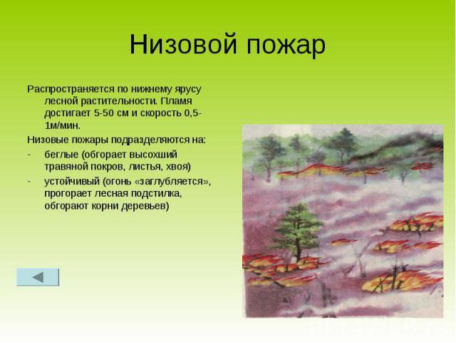 Низовой пожар Распространяется по нижнему ярусу лесной растительности. Пламя достигает 5-50 см и скорость 0,5-1м/мин.Низовые пожары подразделяются на:беглые (обгорает высохший травяной покров, листья, хвоя)устойчивый (огонь «заглубляется», прогорает…
