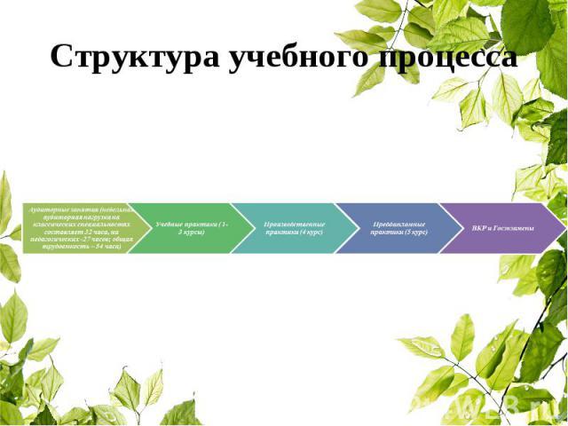 Структура учебного процесса