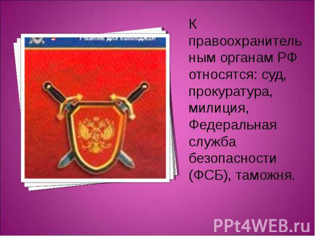 К правоохранительным органам РФ относятся: суд, прокуратура, милиция, Федеральная служба безопасности (ФСБ), таможня.