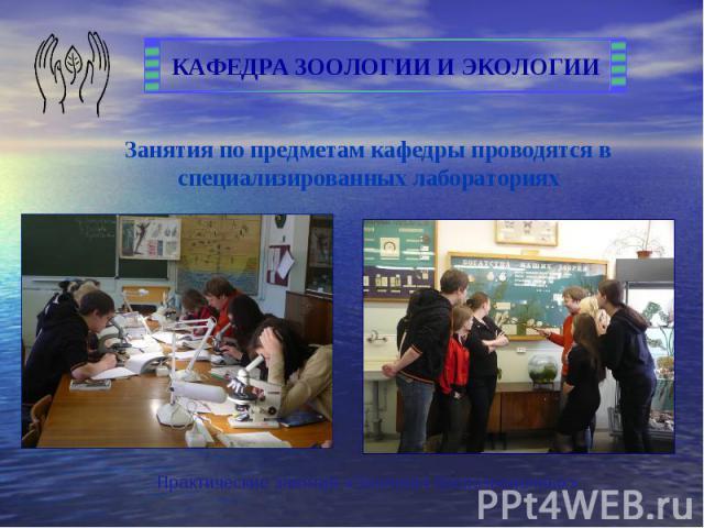 Занятия по предметам кафедры проводятся в специализированных лабораториях