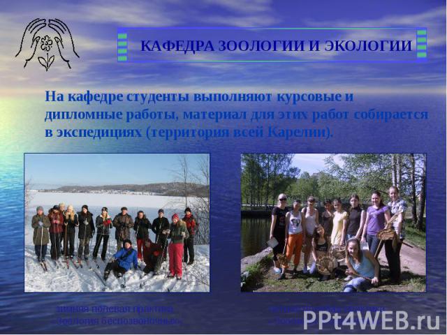 На кафедре студенты выполняют курсовые и дипломные работы, материал для этих работ собирается в экспедициях (территория всей Карелии).