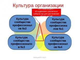 Культура организации Культура сообщества профессионалов №1Культура сообщества пр
