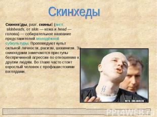 СкинхедыСкинхеды, разг. скины (англ. skinheads, от skin— кожа и head— голова)