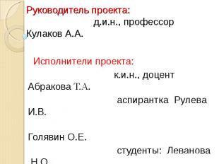 Руководитель проекта: д.и.н., профессор Кулаков А.А. Исполнители проекта: к.и.н.