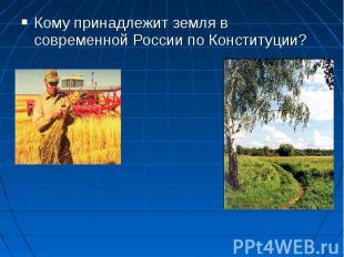 Кому принадлежит земля в современной России по Конституции?