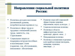 Направления социальной политики России: Политика доходов населения (жизненный ур