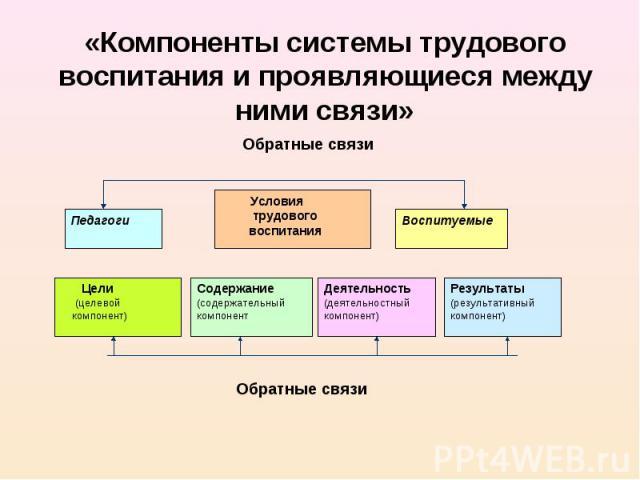 «Компоненты системы трудового воспитания и проявляющиеся между ними связи»