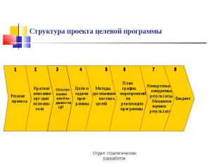Структура проекта целевой программы