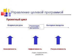Управление целевой программой Проектный цикл