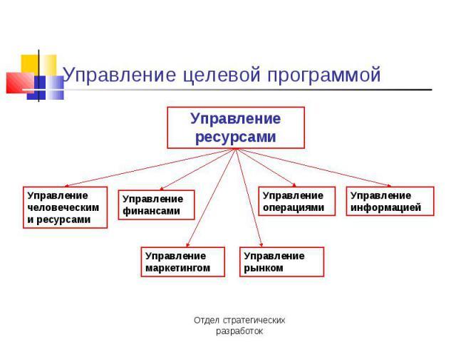 Управление целевой программой