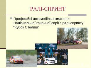 РАЛІ-СПРИНТ Професійні автомобільні змагання Національної гоночної серії з ралі-