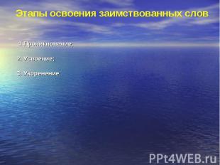 Этапы освоения заимствованных слов 1.Проникновение;2. Усвоение;3. Укоренение.