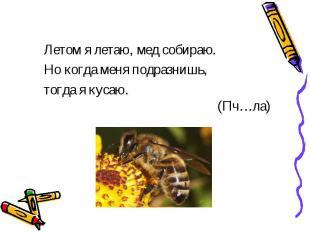 Летом я летаю, мед собираю.Но когда меня подразнишь,тогда я кусаю. (Пч…ла)