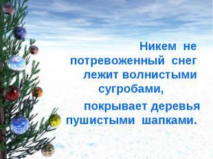 Никем не потревоженный снег лежит волнистыми сугробами, покрывает деревья пушист