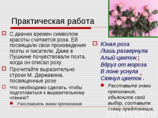Практическая работа С давних времен символом красоты считается роза. Ей посвящал