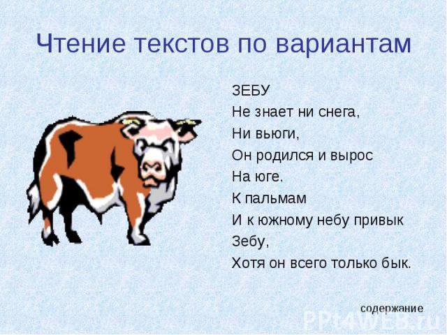 Чтение текстов по вариантам ЗЕБУНе знает ни снега, Ни вьюги,Он родился и вырос На юге.К пальмамИ к южному небу привыкЗебу,Хотя он всего только бык.
