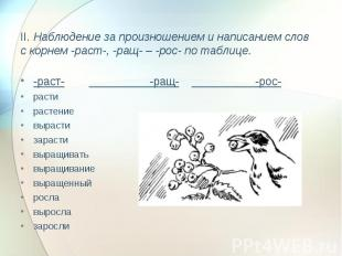 II. Наблюдение за произношением и написанием слов с корнем -раст-, -ращ- – -рос-