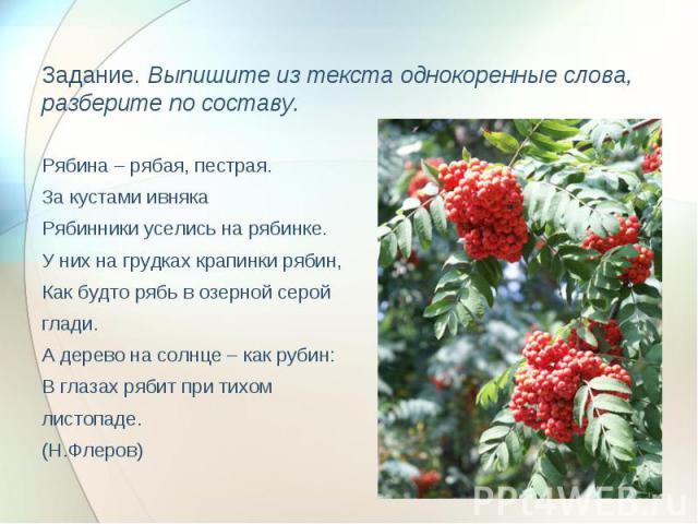 Задание. Выпишите из текста однокоренные слова, разберите по составу. Рябина – рябая, пестрая.За кустами ивнякаРябинники уселись на рябинке.У них на грудках крапинки рябин,Как будто рябь в озерной серой глади.А дерево на солнце – как рубин:В глазах …